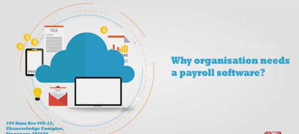 Why organisation needs a payroll software?